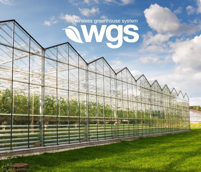 Visual WGS